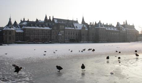 Hofvijver in de winter met vogels op het ijs